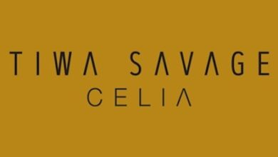 Photo of Tiwa Savage – Park Well Ft Davido [Celia Album]